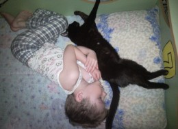 Сон ребенка и кошки, человек спит с котом, Child and cat sleep