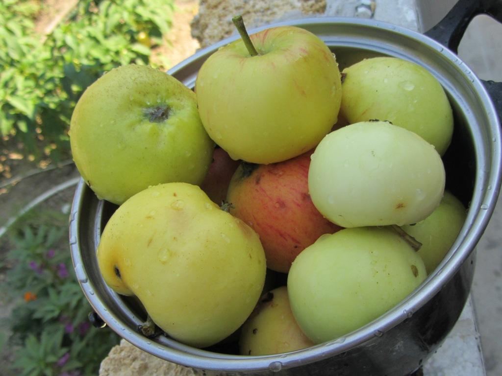 Полезные для здоровья яблоки, яблоки в кастрюле.
