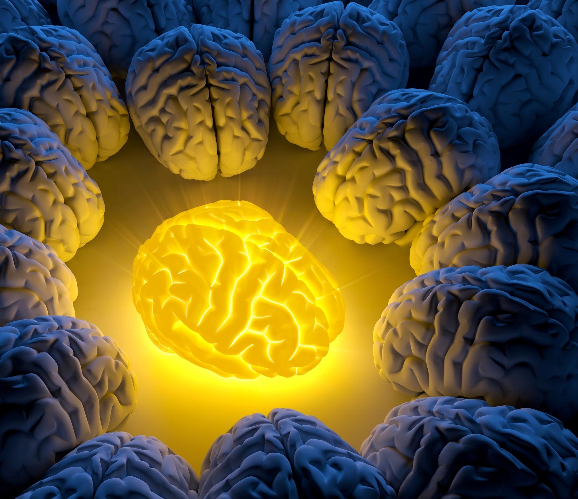 Гениями рождаются или становятся, Настоящий гений, Гением может стать каждый.