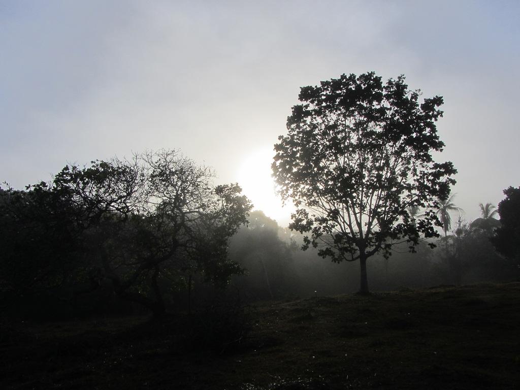 Пермангола 2013, вилла Кобра Мансы утром.