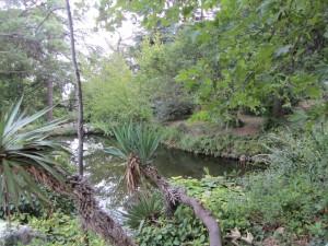 Фотографии Форосского парка в Крыму.