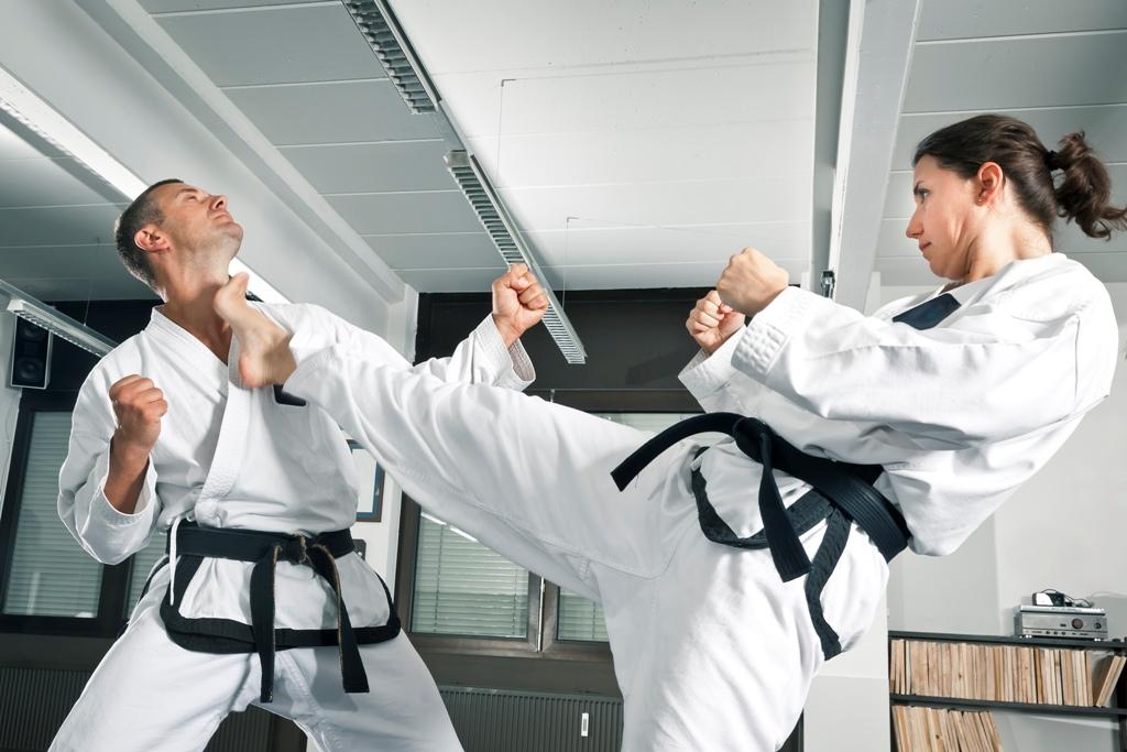 Самый боевой вид спорта, Самый зрелищный вид спорта, Современные боевые искусства,