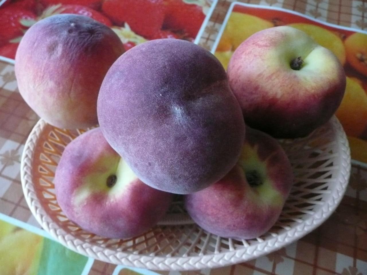 Польза персиков, Персики польза и вред для здоровья, Сорта персиков, Персики для похудения,