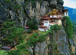 Путешествие в Тибет, В Тибет за силой, Трава мужской силы, Тибетские травяные сборы.