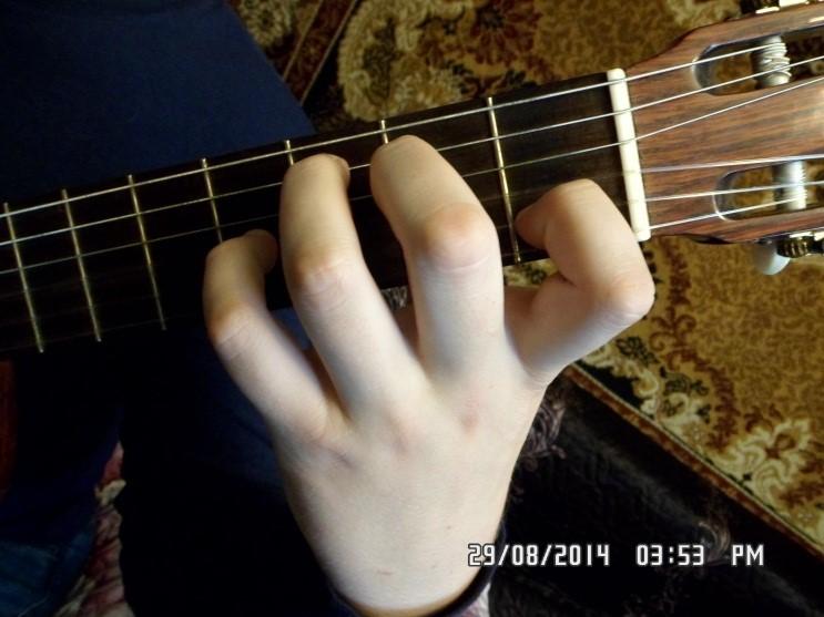 Самая легкая песня на 2 аккорда для начинающих гитаристов, Где взять гитару начинающему, Какая гитара подойдет для новичка,