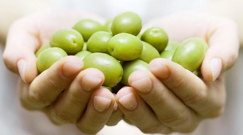 Как выбрать маслины и оливки, Польза консервированных маслин,