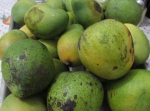По каким критериям выбирать спелое манго.