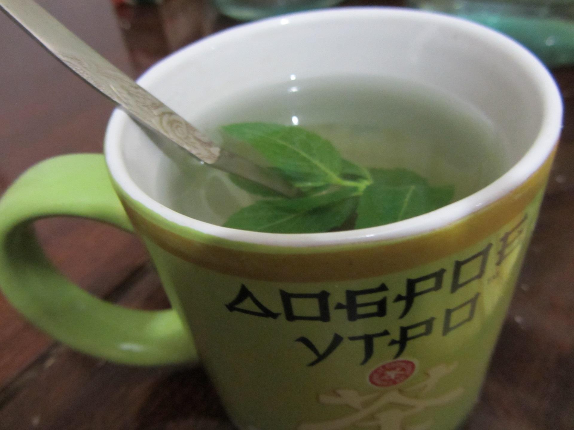 Чай с мятой и похудение, Полезен или вреден мужчинам мятный чай, Как правильно приготовить чай с мятой, Противопоказания и вред мятного чая, С чем можно сочетать мяту в чае,