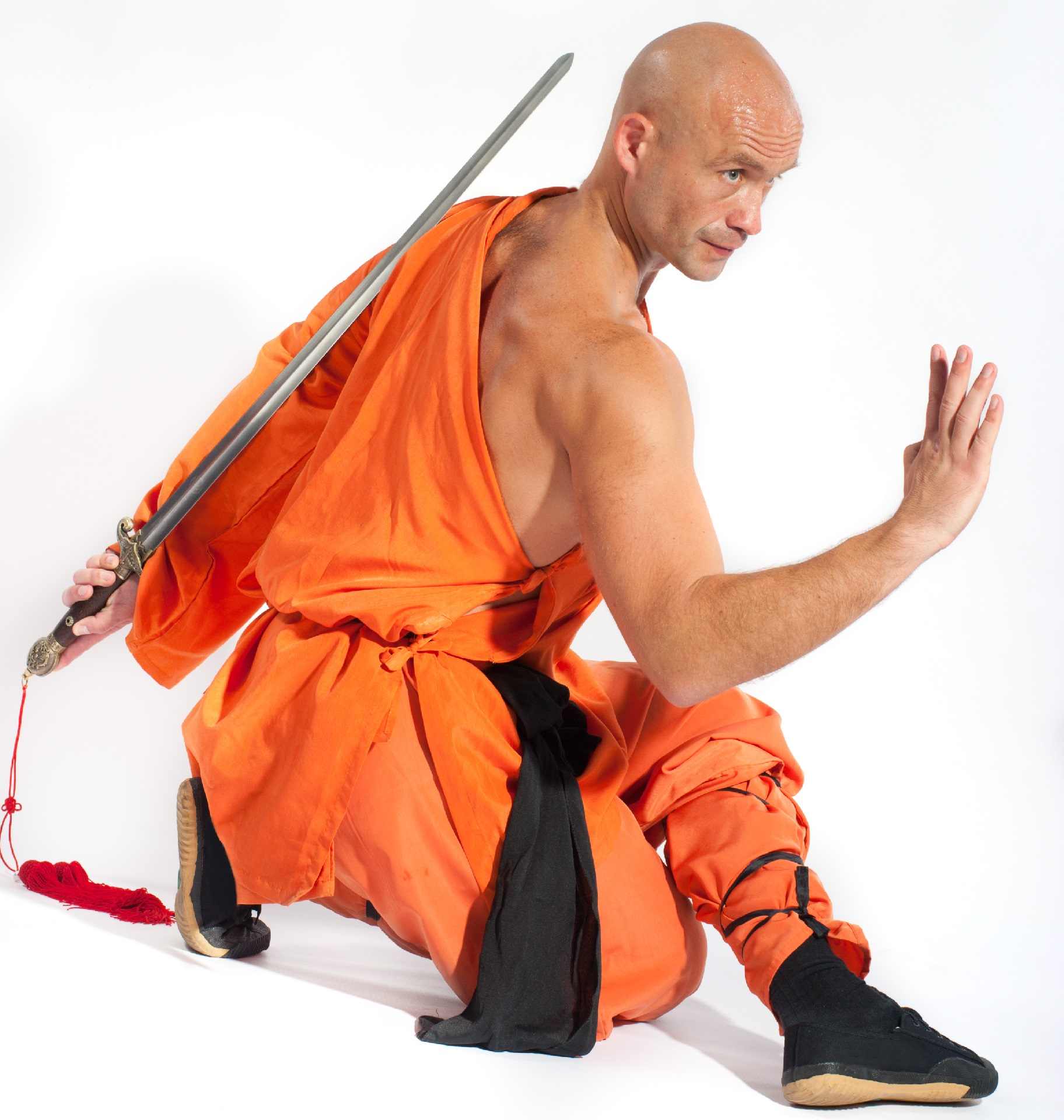 Книги по индийским боевым искусствам скачать