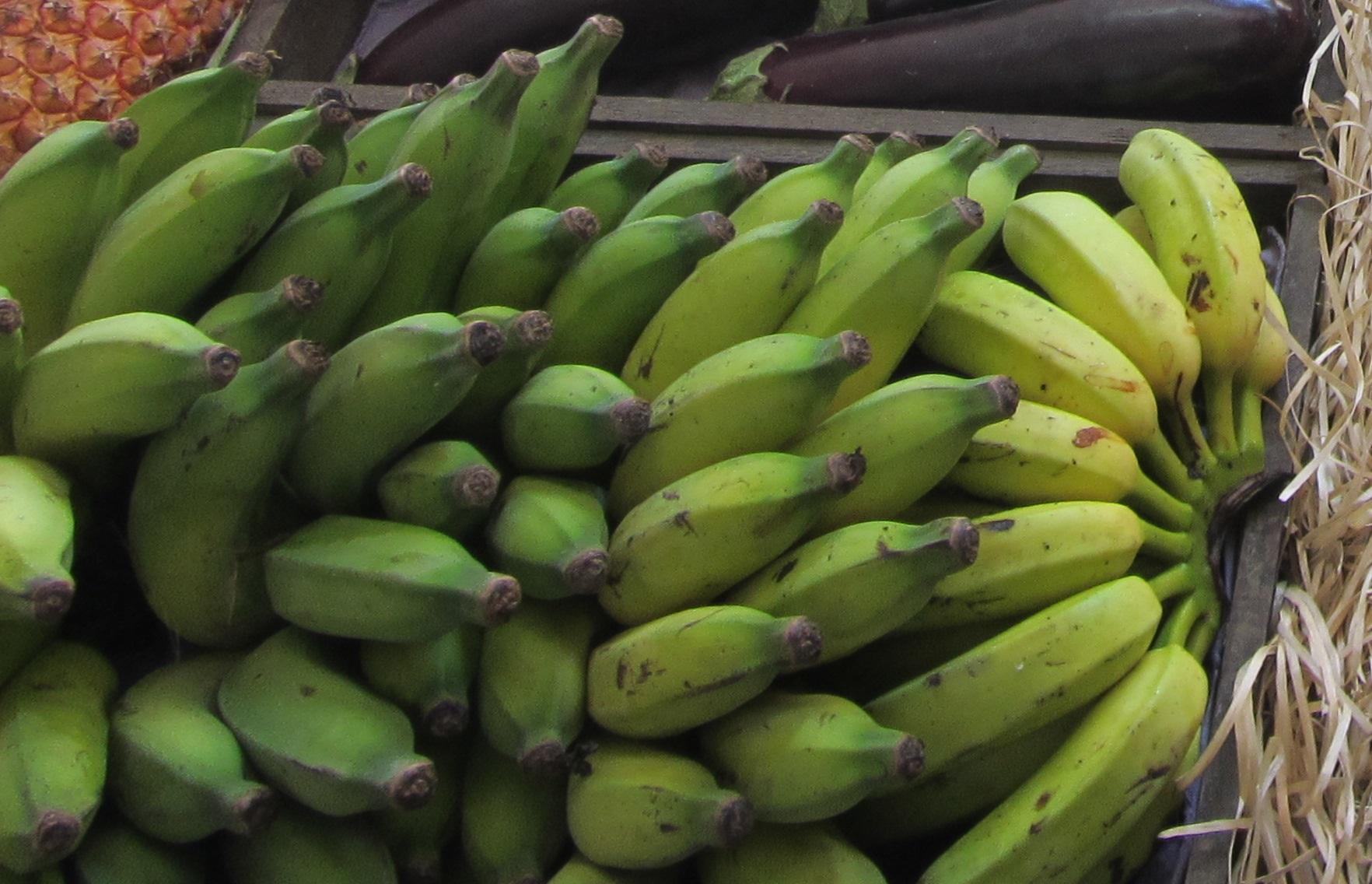 Рассказы жена банан и я фото 784-24