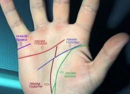 Где у человека на руке находятся линии брака?