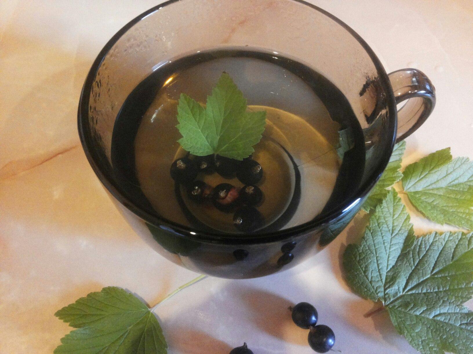 Листья смородины при простатите крем от простатита экадо