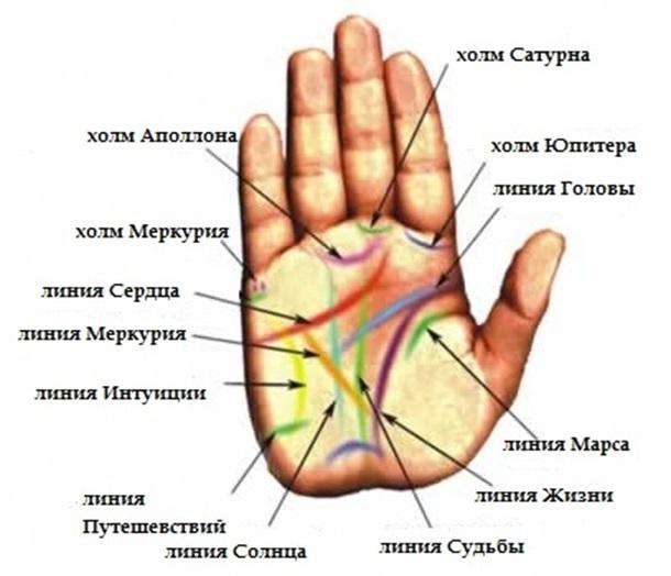Знаки благополучия на руке