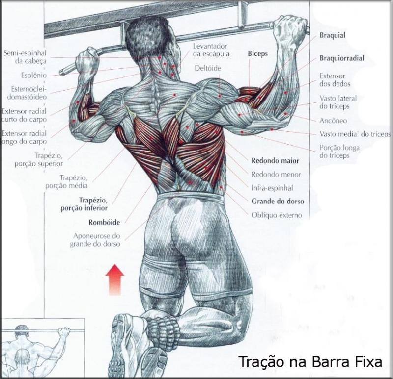 Какие группы мышц качаются во время секса