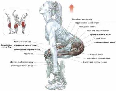 как накачать ягодичные мышцы, мышцы ягодиц в домашних условиях, yagodichnye myshcy