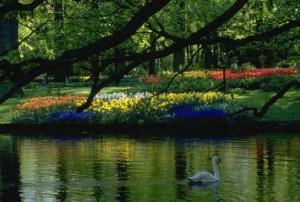 куда поехать в отпуск, заповедники Украины, экологические тропы, заповедник это территория, биосферный заповедник, особо охраняемые территории заповедники, территории заповедника находятся, посещение заповедника, охраняемые природные заповедники, природный заповедник, является памятником природы, национальные и региональные парки